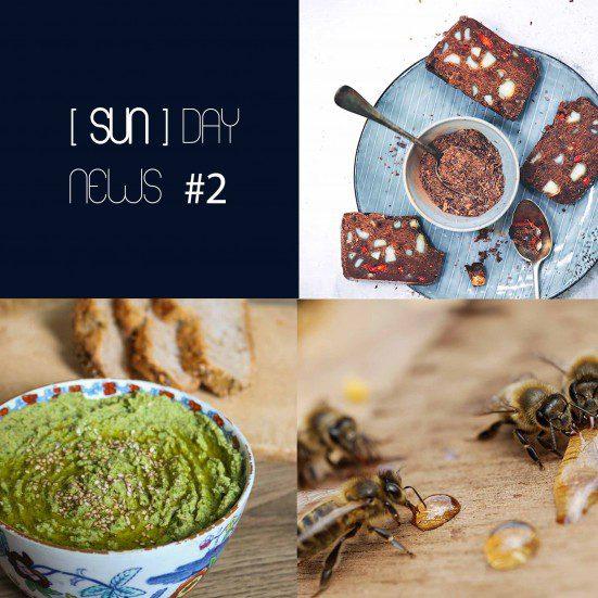 [SUN]DAY NEWS #2